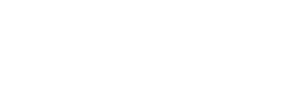 Flashlight Marketing - white logo